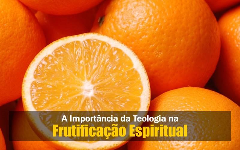 A Teologia na Frutificação Espiritual
